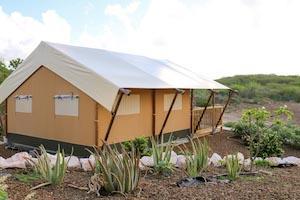 Tente Safari - 3