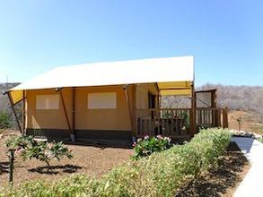 Tente Safari - 4